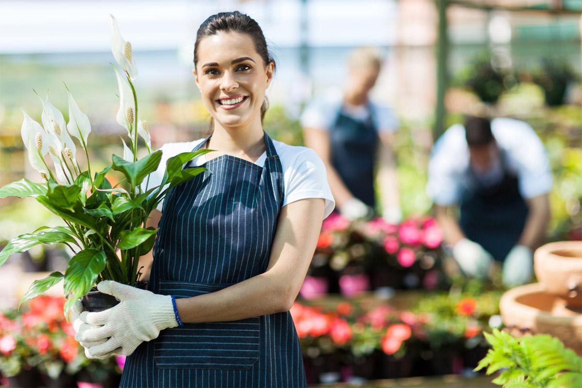 centro fiori ingrosso fiori gambin milano mercato fiori online