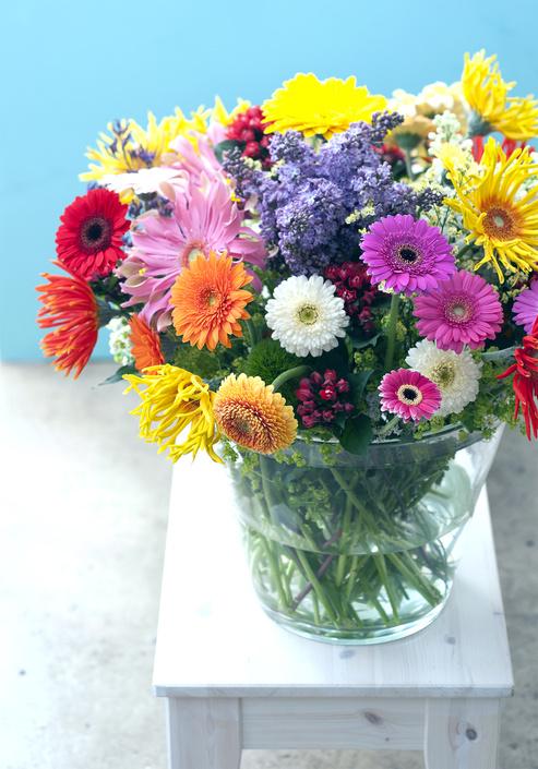 gerbera gerbere ingrosso fiori milano lombardia