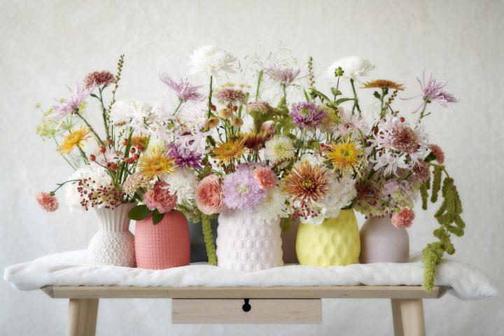 Crisantemi Crisantemo Ottobre fiori ingrosso milano italia