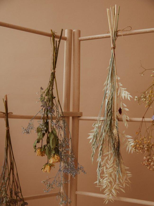 essiccare i fiori fiori essiccati